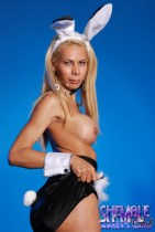 Nicole gaucha. Shemale bunny Nicole shows hard dick