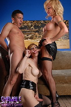 Jasmine jewels olivia 3sum Two exciting shemales having fun with a dude.