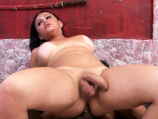 Leticia compoy and the mechanic Good brunette tranny gets banged.