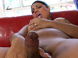 Ts doll Exciting ladyboy playing with her juicy penish.