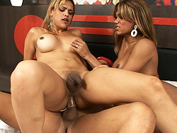 Mariana thaina and yago  excited transsexuals riding on a big fat cock. Libidinous transsexuals riding on a big fat cock