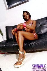 Posh. Lusty Ebony shemale Posing